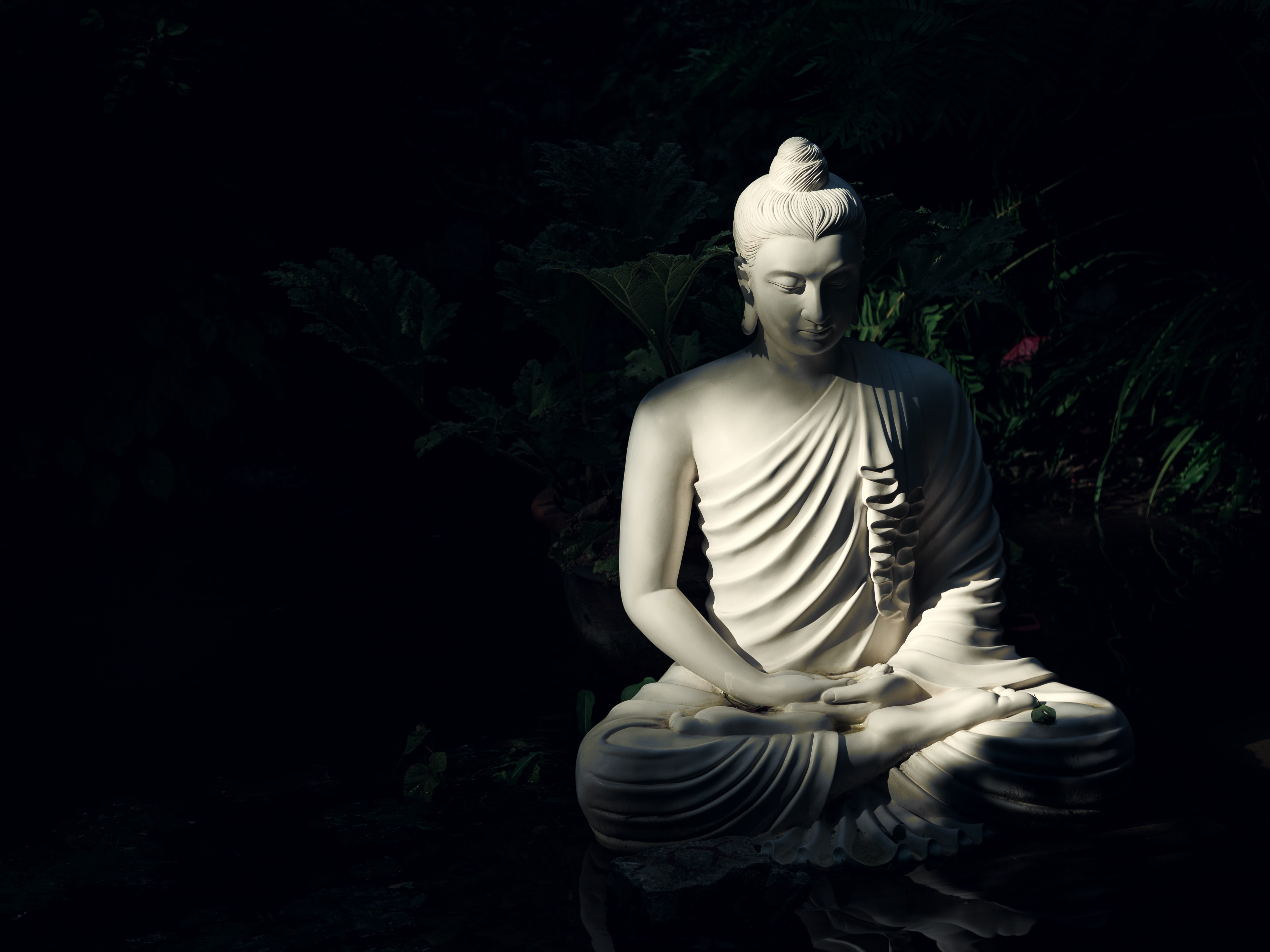 Buddha Statue photo by Mattia Faloretti on Unsplash