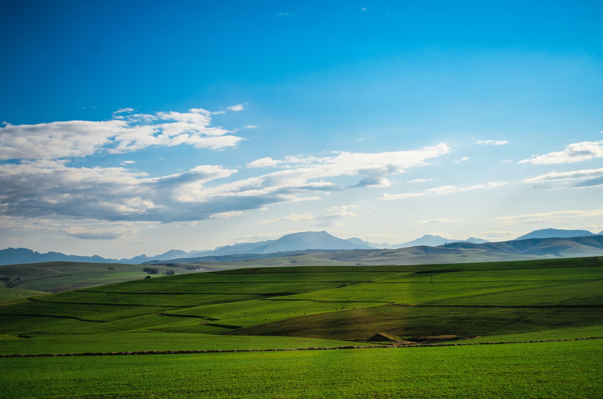 pasture fields and blue sky with white clouds